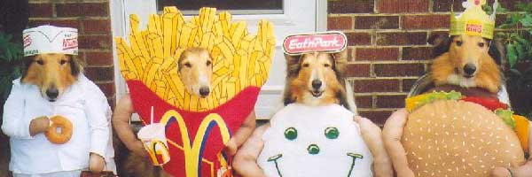 Supersizedmealscom Supersized Dog Halloween Food Costumes